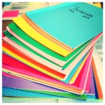 Last year's interactive science notebooks.