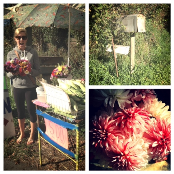 And finally, road side flower and produce stands with my friend, Nicole.