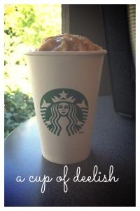 Starbucks' seasonal drinks have arrived!