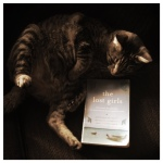My kitty, Franklin, trying to model this book for you all.