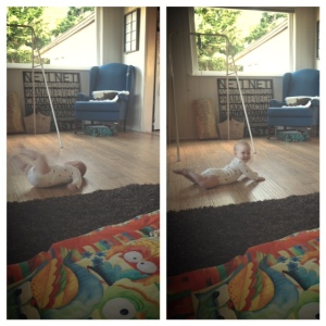 I'm so happy I captured the escapee in mid-roll!
